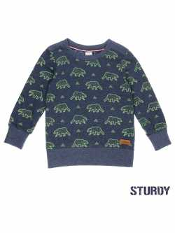 Sweater Sturdy